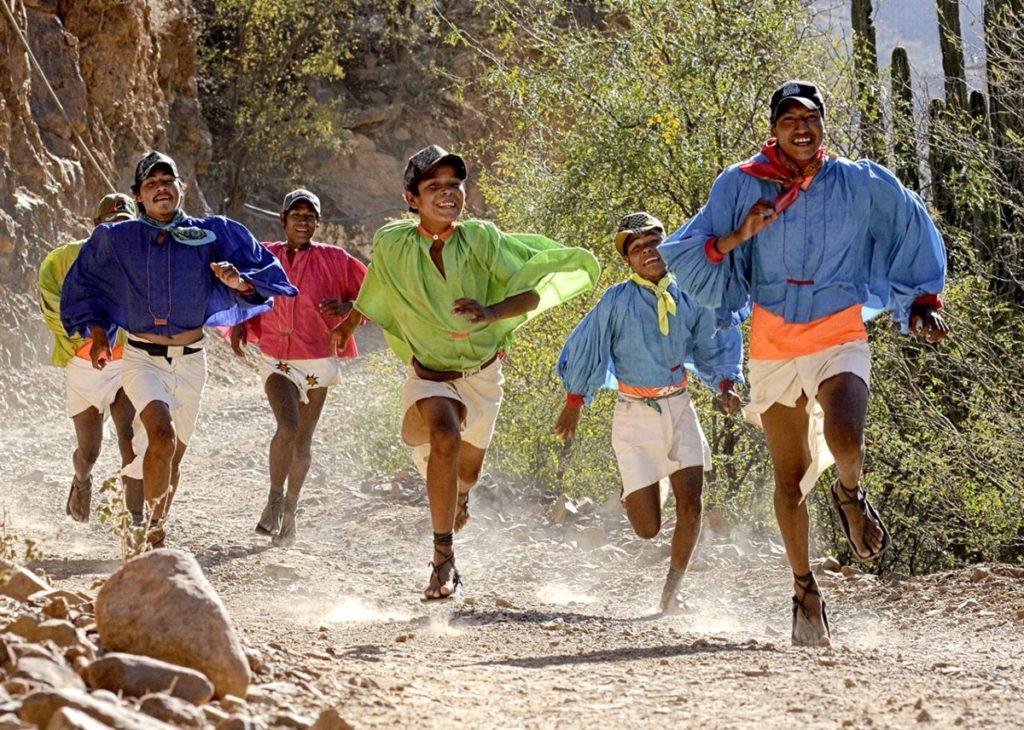 Hạt chia úc nhập khẩu giúp người bản địa Mexico chạy nhanh mà không hề mệt mỏi